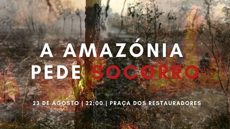 Protestos pela Amazônia na Europa