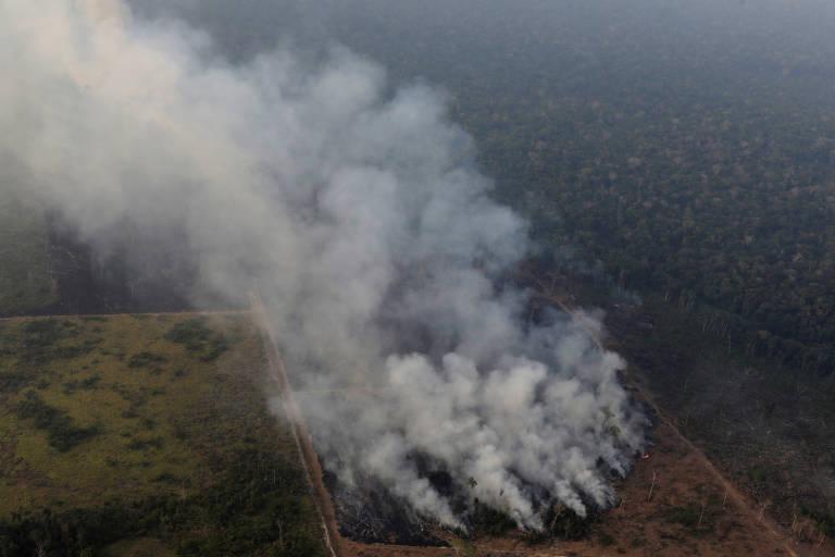 Do alto, fumaça de incêndio e foto da floresta