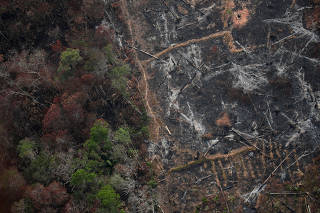 An aerial view of a deforested plot of the Amazon near Porto Velho