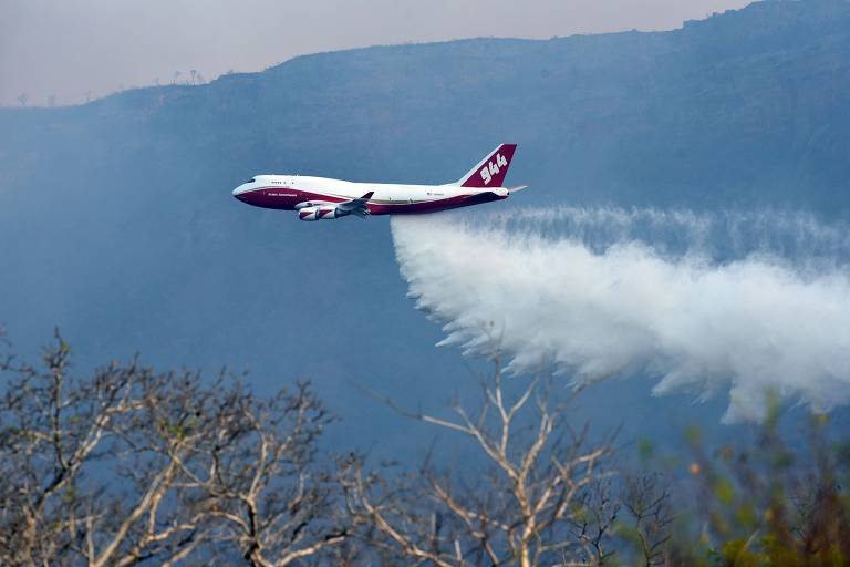 Avião visto de longe sobrevoa floresta e libera água