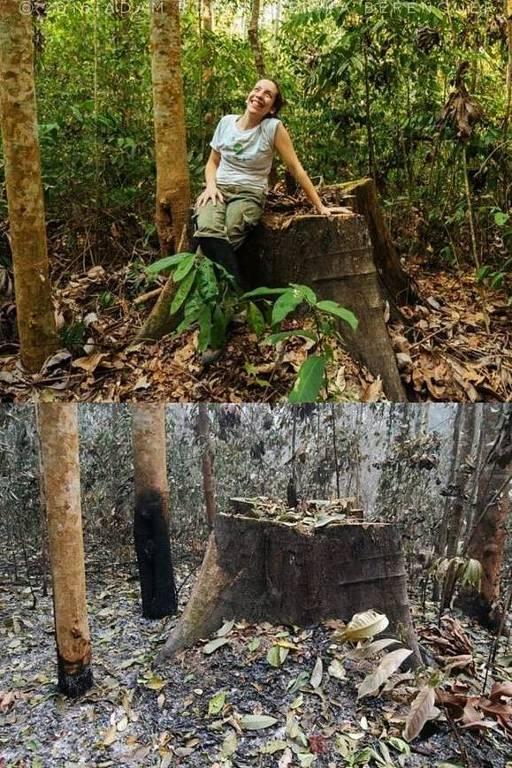 Pesquisadora da Universidade de Oxford, a brasileira Erika Berenguer estuda os efeitos do fogo na região amazônica