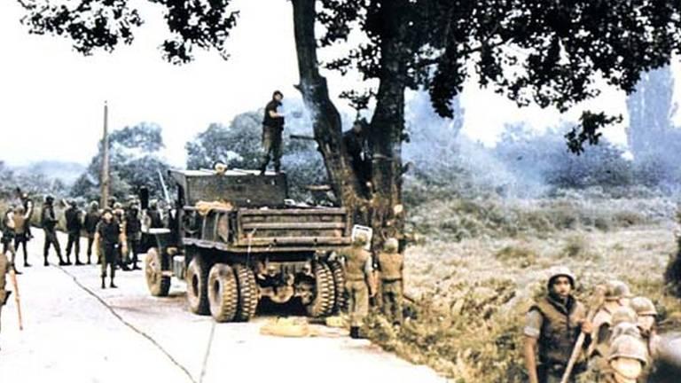 Centenas de tropas foram mobilizadas para dar apoio a um grupo de engenheiros para podar a árvore