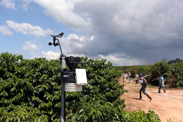 Estação de monitoramento do clima em plantação de café em São João da Boa Vista (SP)