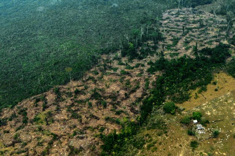 Queimadas se espalham pela Amazônia