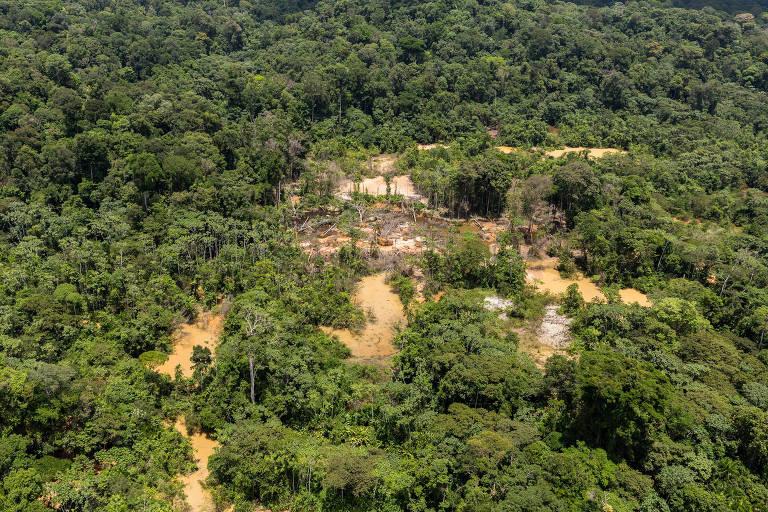 Imagem aérea de garimpo clandestino de ouro na floresta amazônica no território pertencente à França