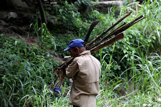 Jorge Asquiles carry firewood collected in Henri Pittier national park in Maracay