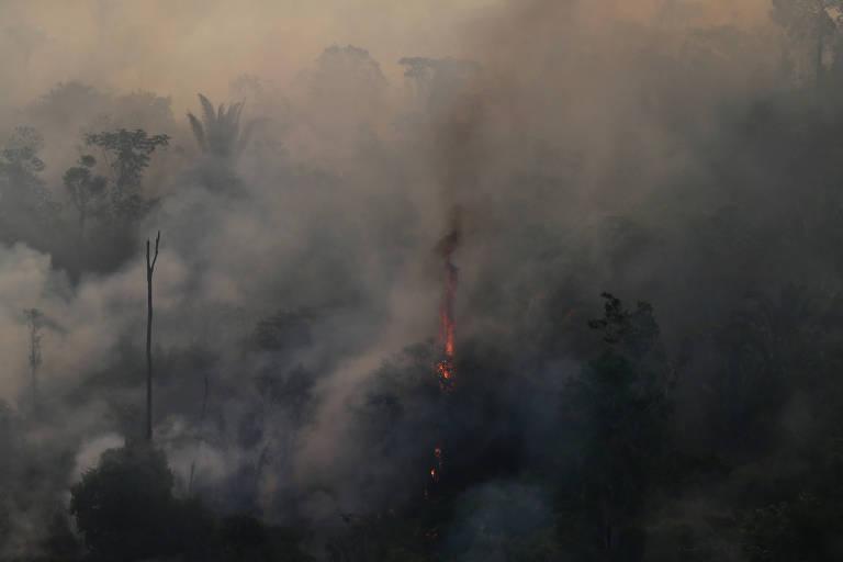 Floresta queima na região de porto velho no dia 29 de agosto de 2019