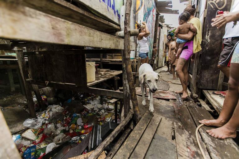 Palafitas construídas à margem do canal de mar que adentra pelo centro do Recife. O local facilita a proliferação do mosquito aedes aegypti, que transmite a dengue, o vírus zika e a chikungunya. Foto faz parte de livro que discute a ascensão do bolsonarismo no Brasil