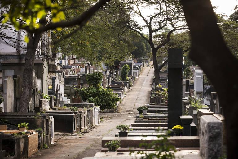 Cemitério do Araçá, na zona oeste de São Paulo; necrópoles serão concedidas à iniciativa privada
