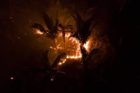 PORTO VELHO, RO, 28.08.2019 - Focos de queimada são registrados na floresta Amazônica a partir da Vila Samuel linha 25, na cidade de Porto Velho, capital do estado de Rondônia. (Foto: André Cran/Folhapress)