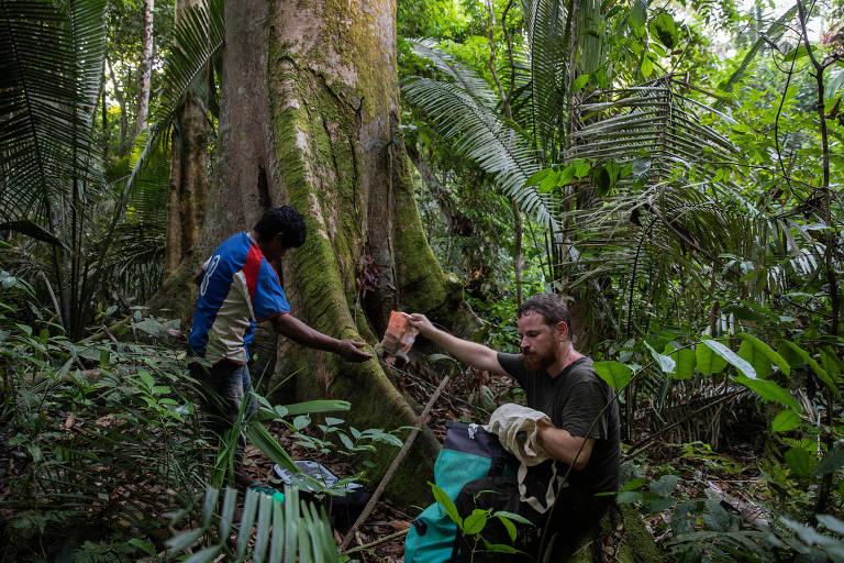 Jornalismo é caminhar por horas na floresta para cobrir disputa por terra
