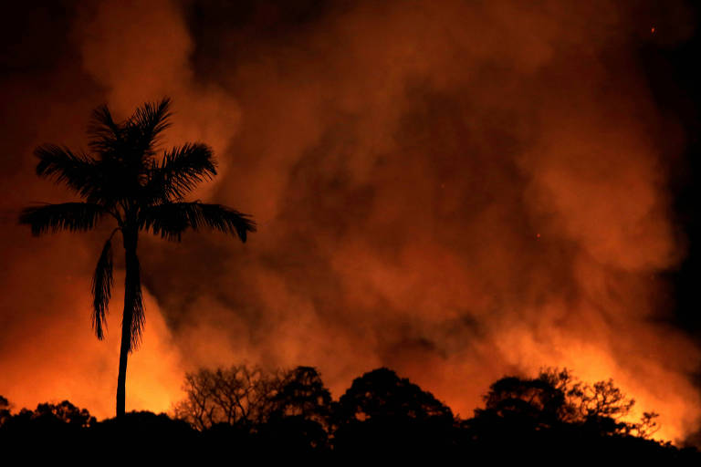 Fogo na selva amazônica na região de Porto Velho (Rondônia)