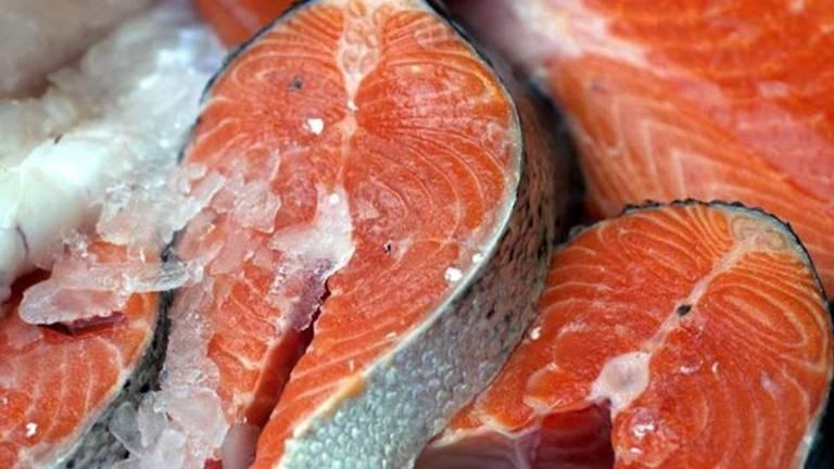 Postas de salmão cru