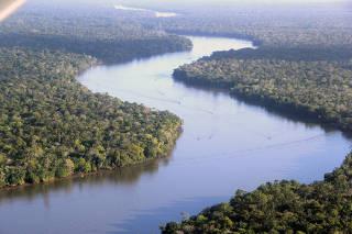 Vista aérea da floresta amazônica, em Belém (PA)