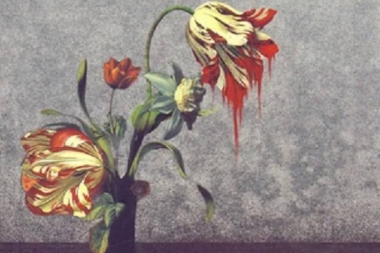 """Capa de """"Max Havelaar"""", do holandês Multatuli, publicado pela editora Âyné."""