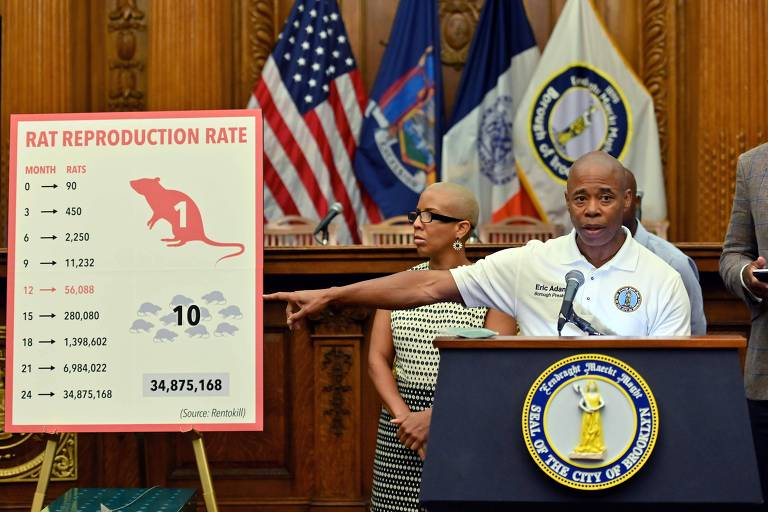 Autoridades apresentam o plano-piloto para livrar o Brooklyn da infestação de ratos
