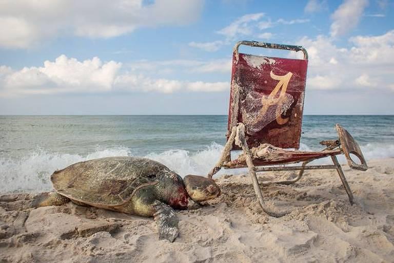 Resíduos da praia, por Thomas Ware, dos Estados Unidos