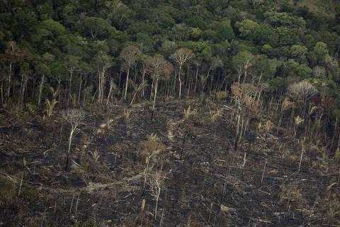 PORTO VELHO, RO, 09.09.2019 - Terreno desmatado e queimado é visto na floresta Amazônia nos arredores de Porto Velho, em Rondônia. (Foto: Bruno Rocha /Fotoarena/Folhapress) ORG XMIT: 1792517