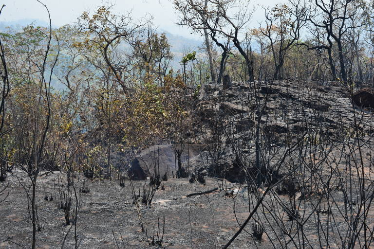Fogo fecha parque para turistas na Chapada dos Guimarães em MT