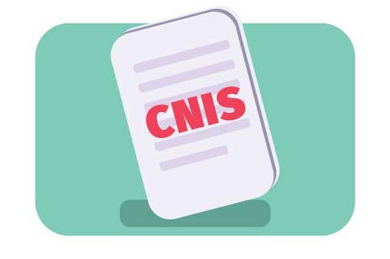 O que é Cnis do INSS?