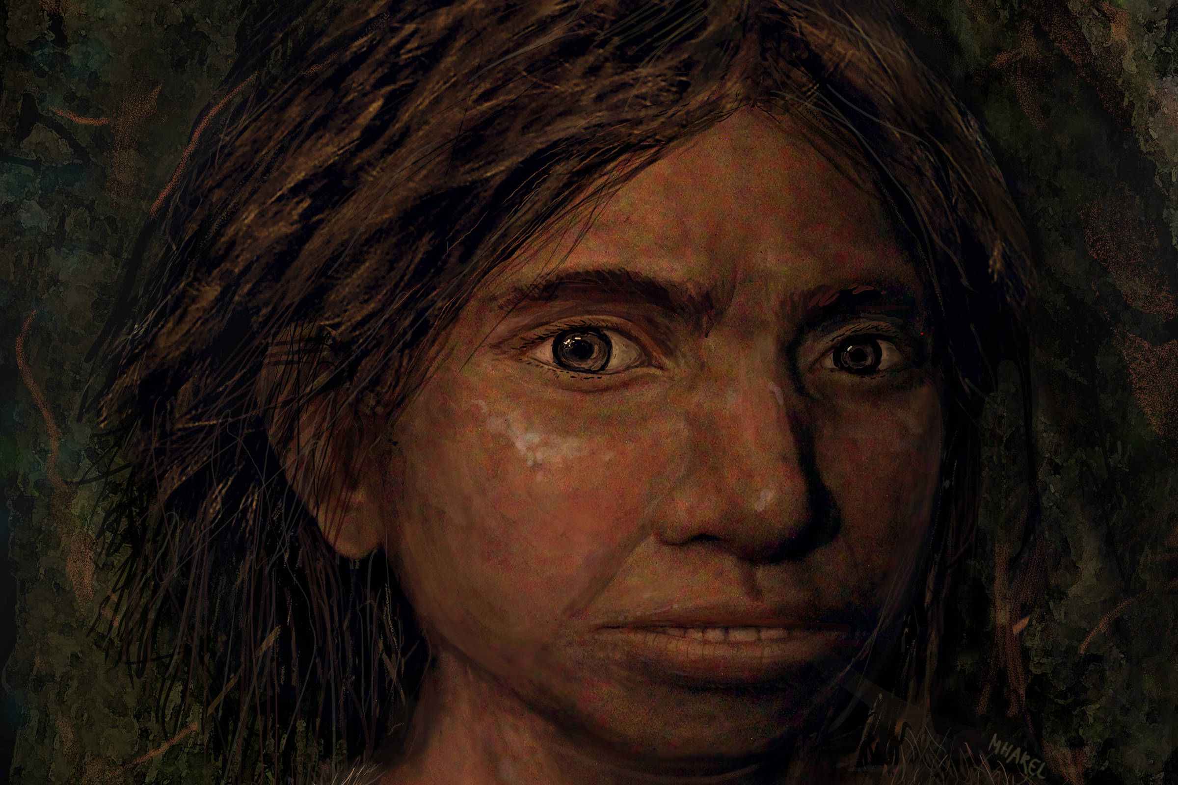 'Supercaic' hominid may be new branch in human evolutionary tree