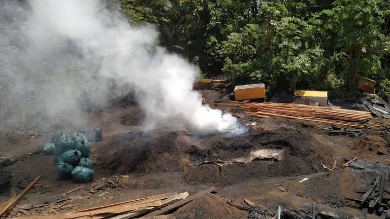 Apreensão de toras de madeira em empresa ligada a tenente-coronel do Pará