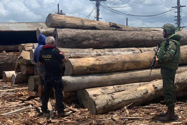 Apreensão de toras de madeira no Pará