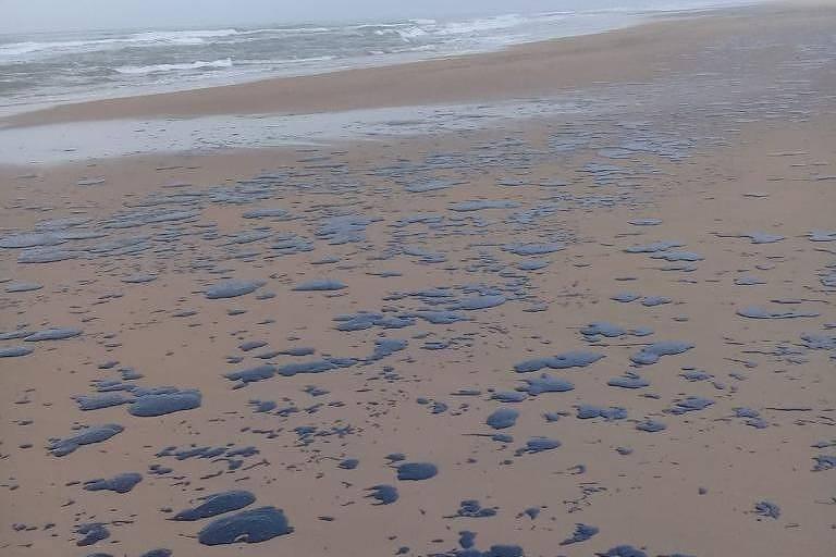 Óleo atinge praias do Nordeste