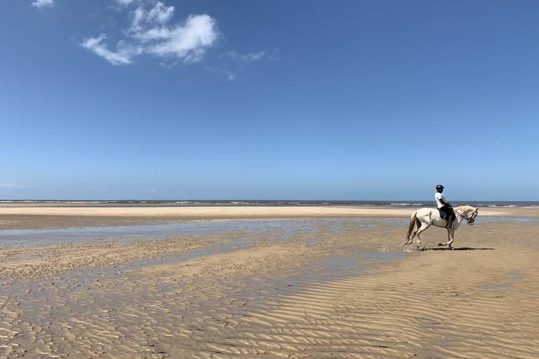 Passeio em cavalo lusitano na praia de Santo Antônio, vizinha a Santo André (BA)