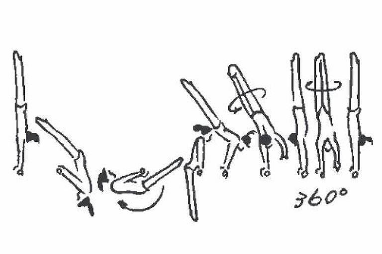 The Biles (barras assimétricas) - Círculo livre para frente seguido de rotação de 360º - Dificuldade E (0,5)