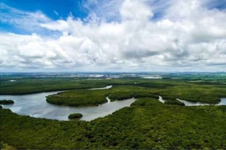 Ampla paisagem amazônica, com um rio sinuoso cortando a densa floresta.