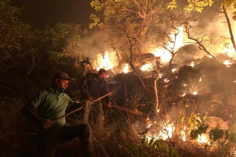 Brigadistas e voluntários combatem incêndio que atingiu o Parque Estadual de Monte Alegre