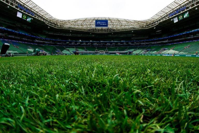 Estádio do Verdão pode ter grama sintética