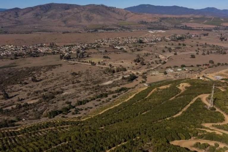 A imagem aérea mostra uma grande área de seca, em oposição a um espaço verde bem mais restrito, onde o cultivo ainda é possível