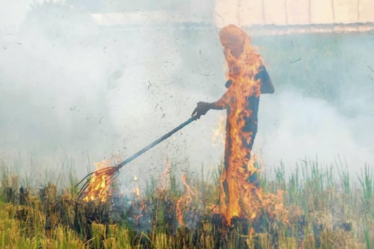 Um agricultor queima restolho de palha depois de colher as plantações de arroz em um campo nos arredores de Amritsar, na Índia