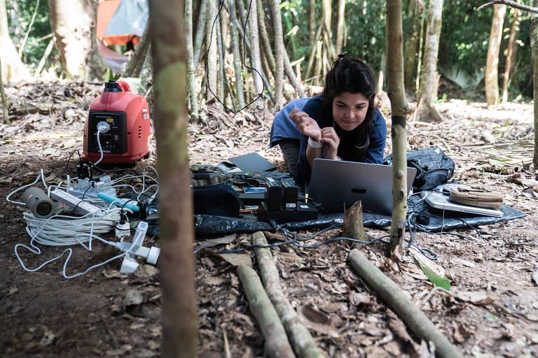 Expedição à Amazônia: Profissão Repórter