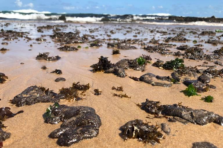Manchas de óleo na Bahia