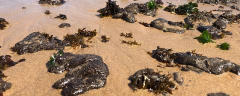 Oil blobs are seen on the sand of the Pituba beach located in the city of Salvador, Bahia state, Brazil, in the morning of October 16, 2019. - Large blobs of oil staining more than 130 beaches in northeastern Brazil began appearing in early September and have now turned up along a 2,000km stretch of the Atlantic coastline. The source of the patches remain a mystery despite President Jair Bolsonaro's assertions they came from outside the country and were possibly the work of criminals. (Photo by Antonello Veneri / AFP)