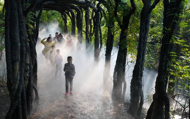 Em meio a árvores e neblina, visitantes caminham