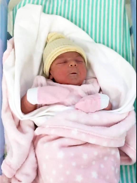 Maurício Mattar acaba de ser pai pela quarta vez, aos 55 anos. Nasceu Ilha no dia 21 de outubro a filha de Mauricio com Shay Dufau, de 29 anos