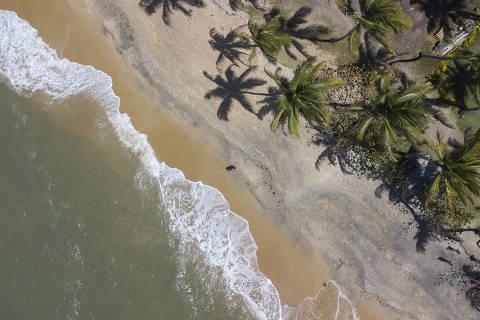 PORTO SEGURO, BA, 26.08.2019: TOP OF MIND 2019 CVC - Vista aérea da Praia do Espelho, em Trancoso, distrito do município de Porto Seguro, na Bahia. (Foto: Dirceu Neto/Folhapress, REVISTA TOP OF MIND) ***EXCLUSIVO FOLHA***