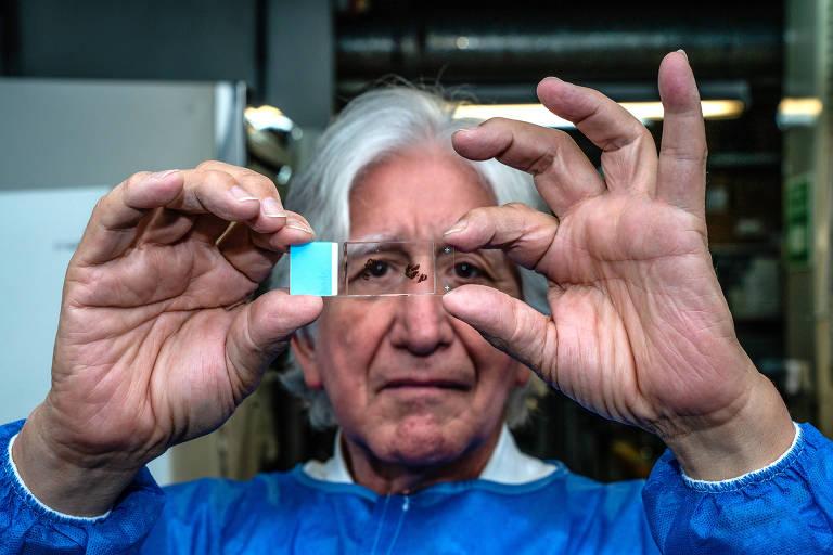 O neurologista Francisco Lopera, em Medellín, na Colômbia, que tem uma coleção de amostras de cérebros e registros de uma família colombiana com mutações genéticas que predispõem ao alzheimer