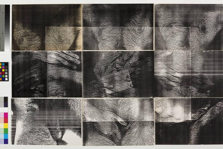 Trabalho de Hudinilson Jr., artista que ganhará retrospectiva na Pina Estação, em 2020