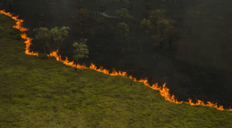 Incêndios no Pantanal crescem em 2019