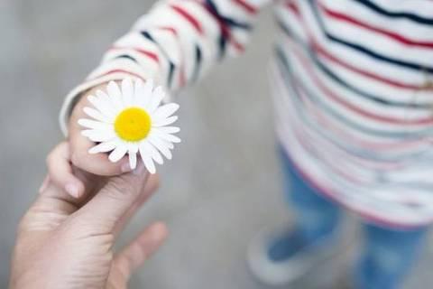 A gentileza beneficia 'o sistema imunológico e a pressão sanguínea e ajuda as pessoas a viver mais e melhor', diz a médica Kelli Harding