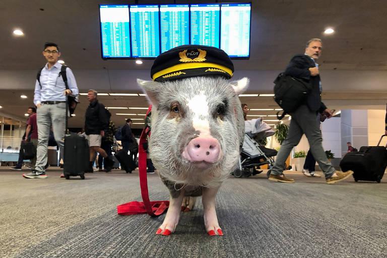 LiLou posa com cap de piloto e com os casos pintados de vermelho no saguão do aeroporto de São Francisco