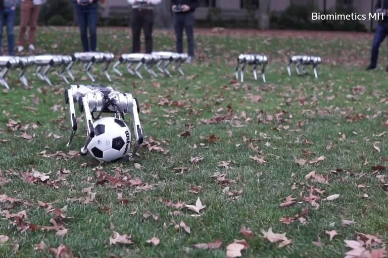 Os 'indestrutíveis' robôs do MIT capazes de dar saltos mortais e jogar futebol