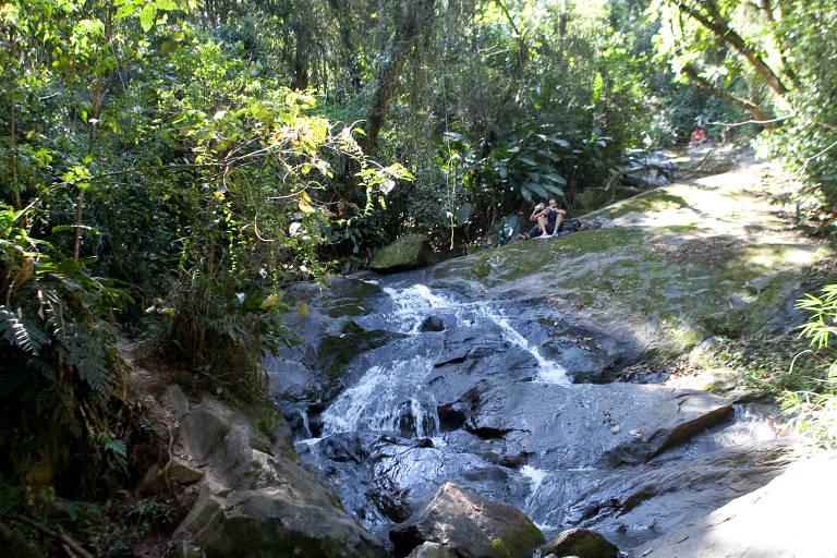 Parque estadual em São Paulo tem flora e fauna nativas e cachoeiras