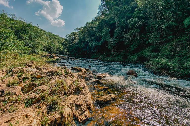 Trecho da trilha dos Manacás, no extremo sul da cidade de São Paulo, região de proteção ambiental, com predominância de mata atlântica