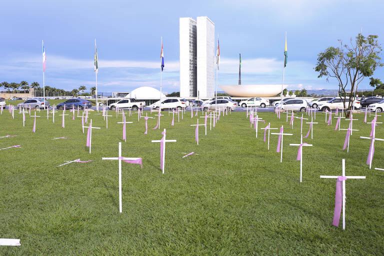 Cruzes em frente ao Congresso pelo Dia Internacional Para a Eliminação da Violência Contra a Mulher